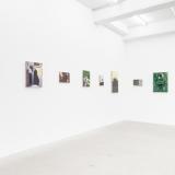 installation-view: David Fletcher, 2013
